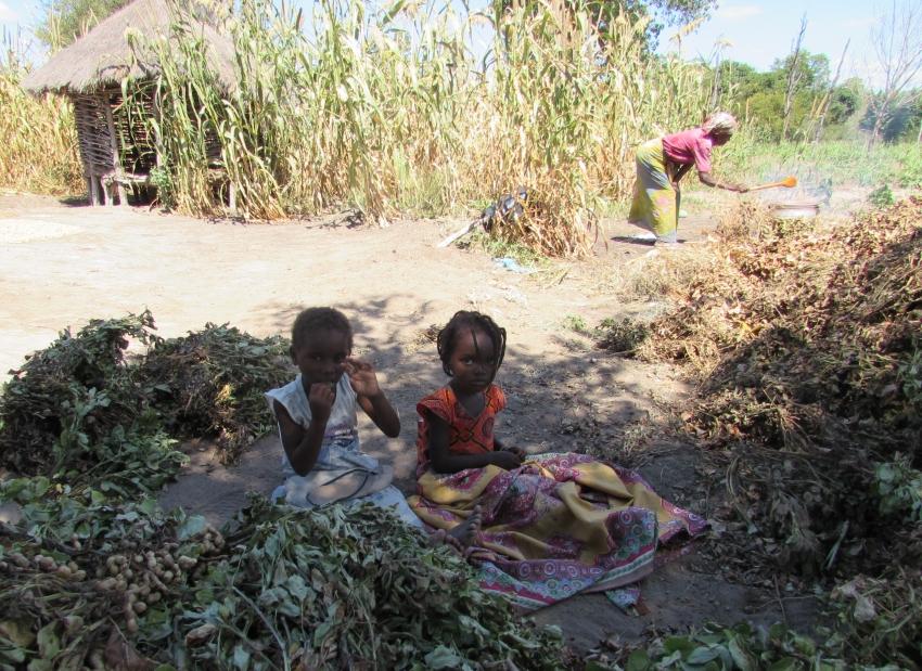 Imagen de la noticia Madre Coraje y la AACID trabajan en Mozambique para hacer frente a las sequías e inundaciones
