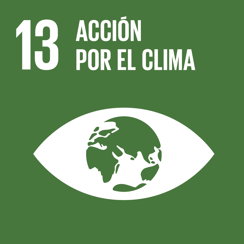 Objetivo 13: Acción por el clima