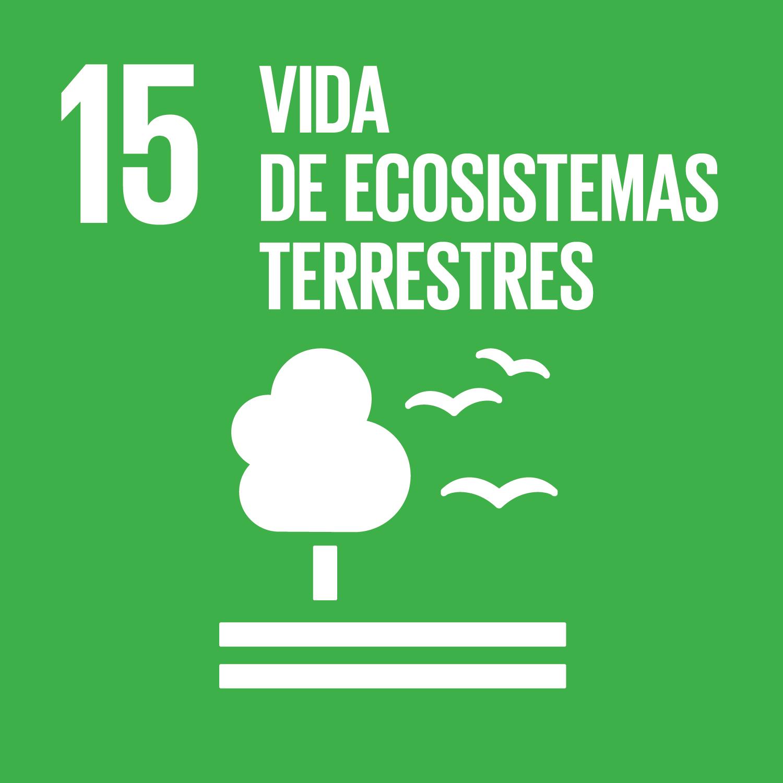 Objetivo 15: Vida de ecossitemas terrestres