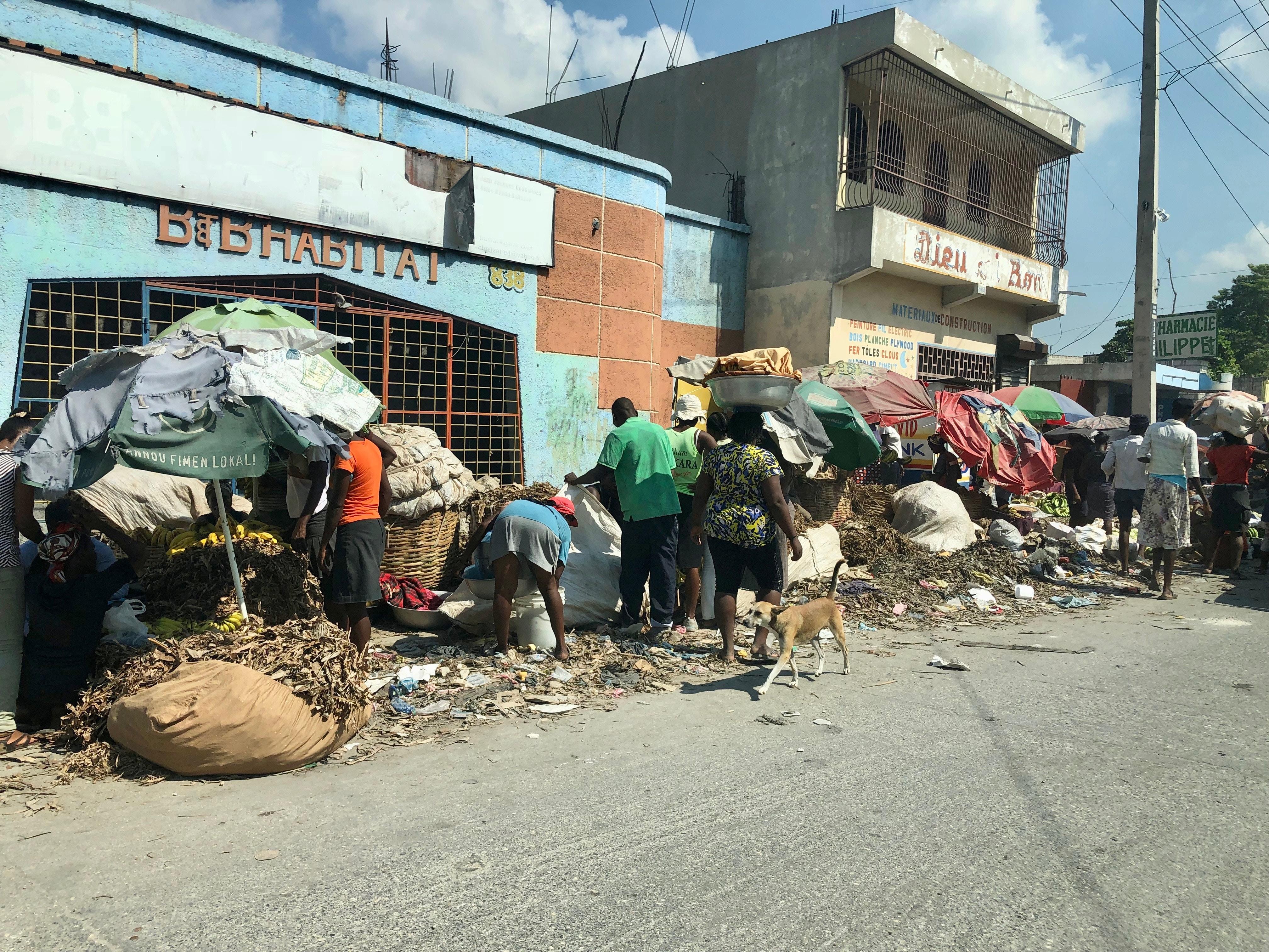 Imagen de la noticia Respuesta en salud en Haití después del huracán Matthew