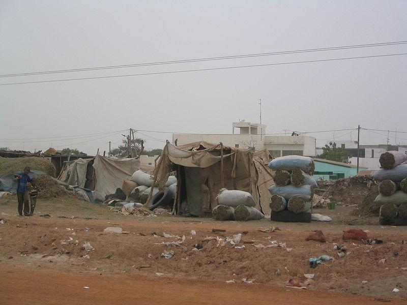 Imagen de la noticia El regadío en el del río Senegal como medio para la mejora de la seguridad alimentaria y la resiliencia de sus poblaciones