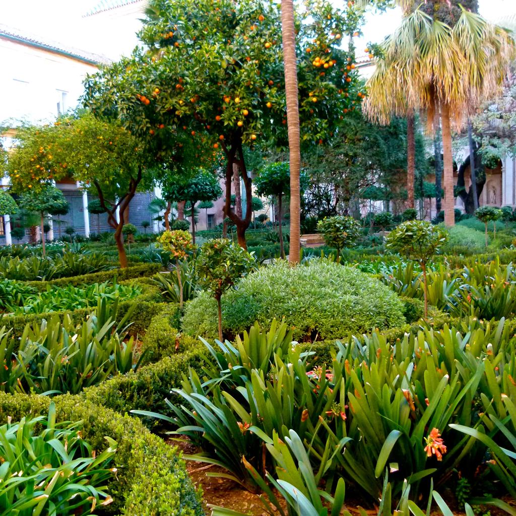 Imagen de la noticia Stop minas: construcción colectiva de un jardín para la paz