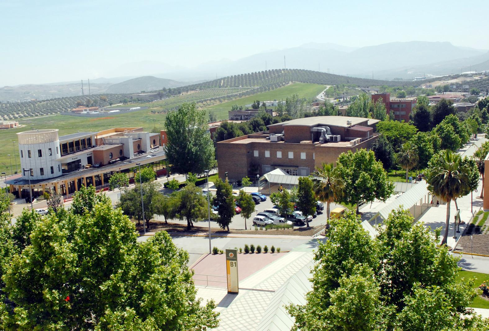Imagen de la noticia Sensibilización de la comunidad universitaria en los objetivos de desarrollo sostenible y en cooperación al desarrollo