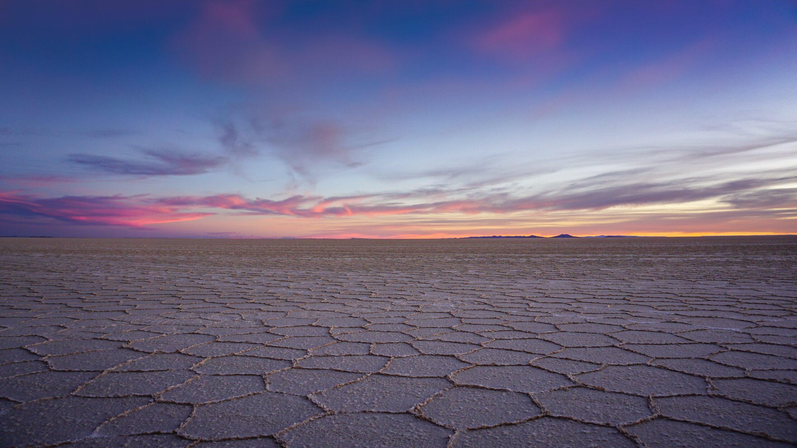 Imagen de la noticia Desarrollo y transferencia de innovación científica generada en Andalucía, a través de la estación experimental IHSM La Mayor del CESIC, sobre un durazno más resiliente al cambio climático aplicado en la zona altoandina de Bolivia