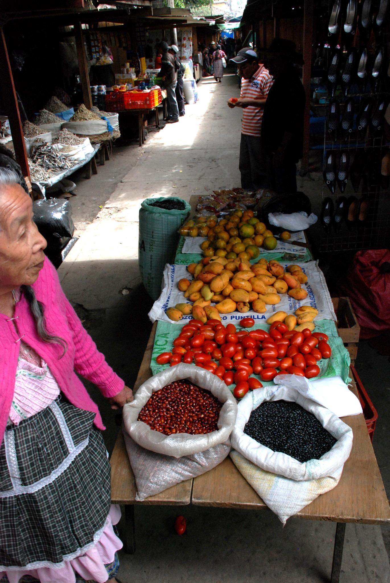 Imagen de la noticia Derecho humano a la alimentación para el pueblo maya Ch'ortí' de Guatemala