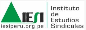 Instituto de Estudios Sindacales Internacionales (IESI)