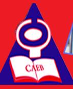 Conseils et Appui pour l'Education à la Base (CAEB)