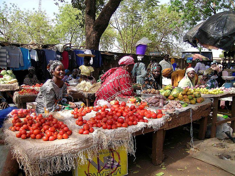 Imagen de la noticia Apoyo a la mejora de la seguridad alimentaria y a la capacidad de resiliencia de la población en 10 aldeas de la comuna rural de Zantièbougou (región de Sikasso, Malí)