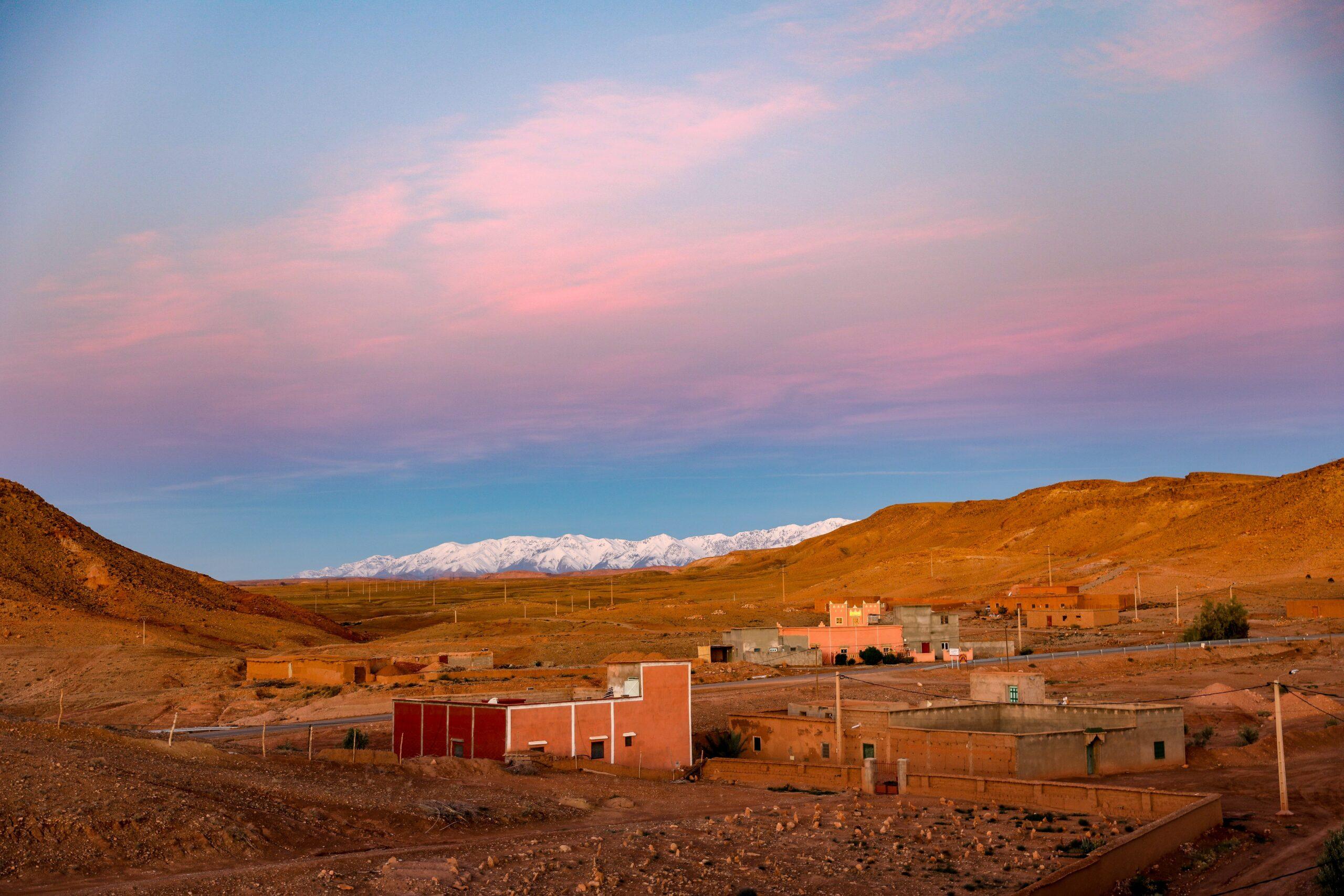 Imagen de la noticia Mejora de la productividad de cultivos forestales de alto interés socioeconómico en áreas rurales del norte de Marruecos