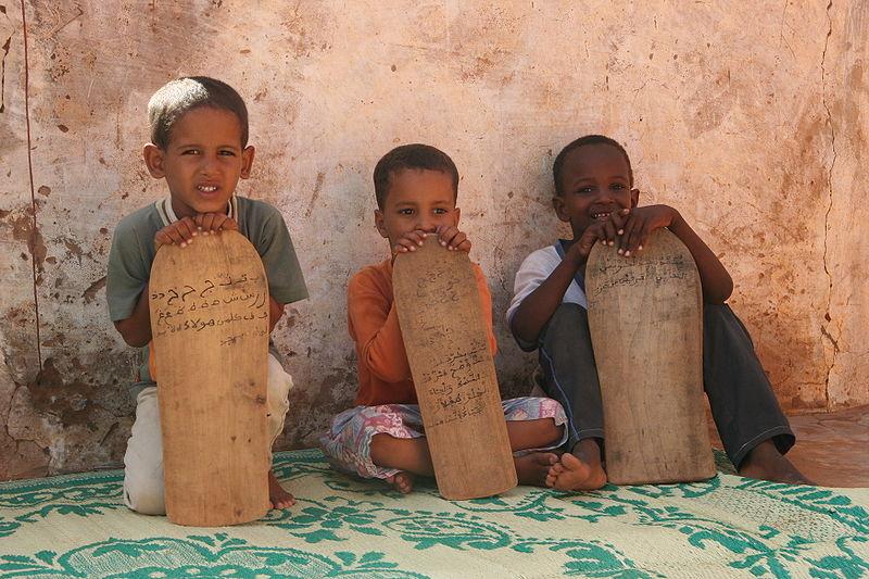 Imagen de fondo de École de Santé Publique (Mauritania)