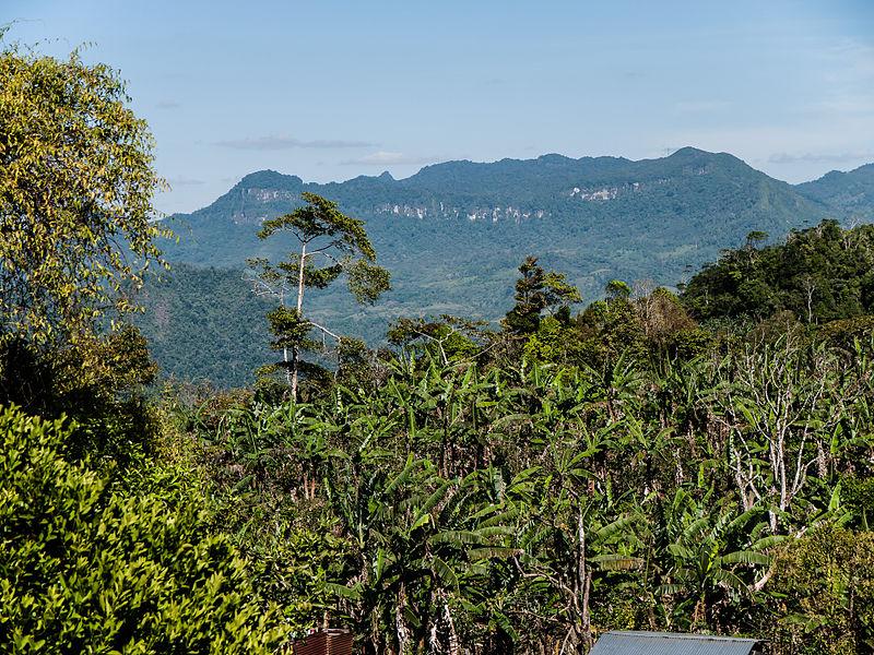 Imagen de la noticia Mejorar la capacidad de resiliencia de los/as campesinos/as nicaragüenses frente al cambio climático