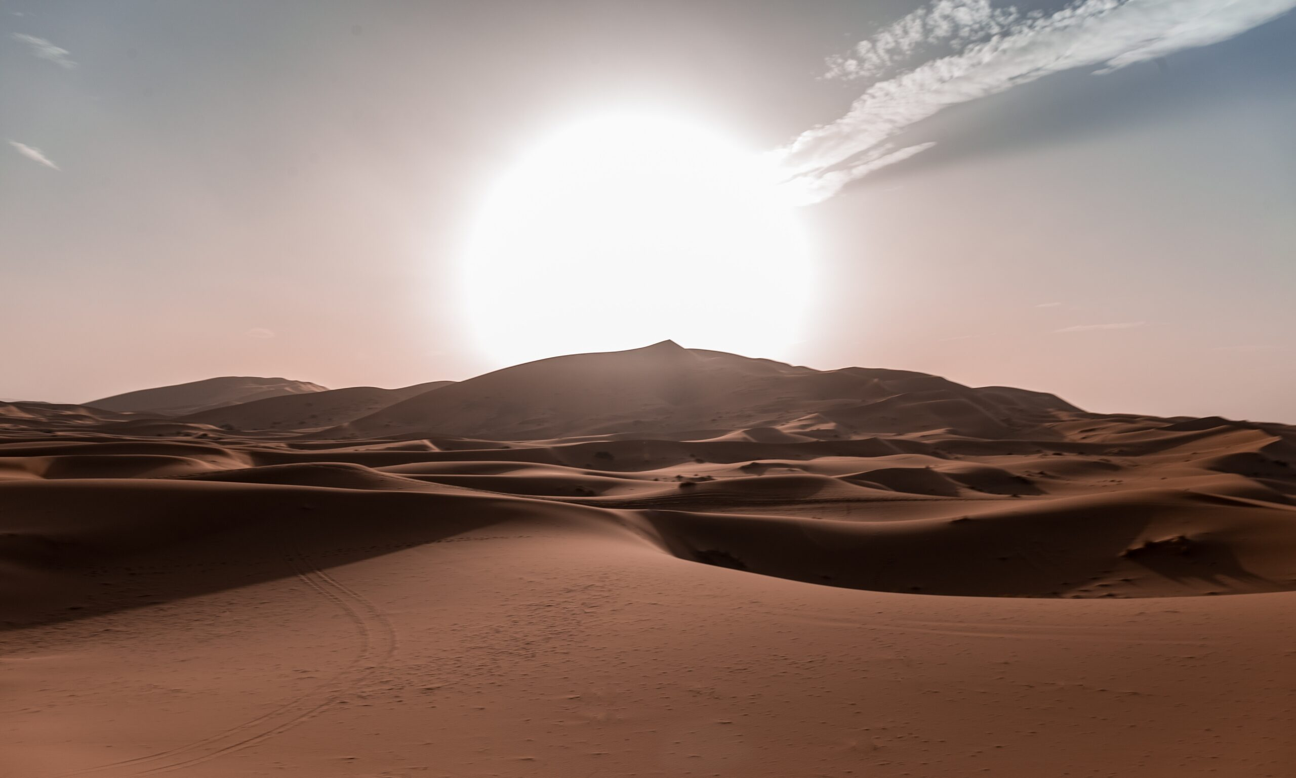 Imagen de fondo de Media Luna Roja Saharaui