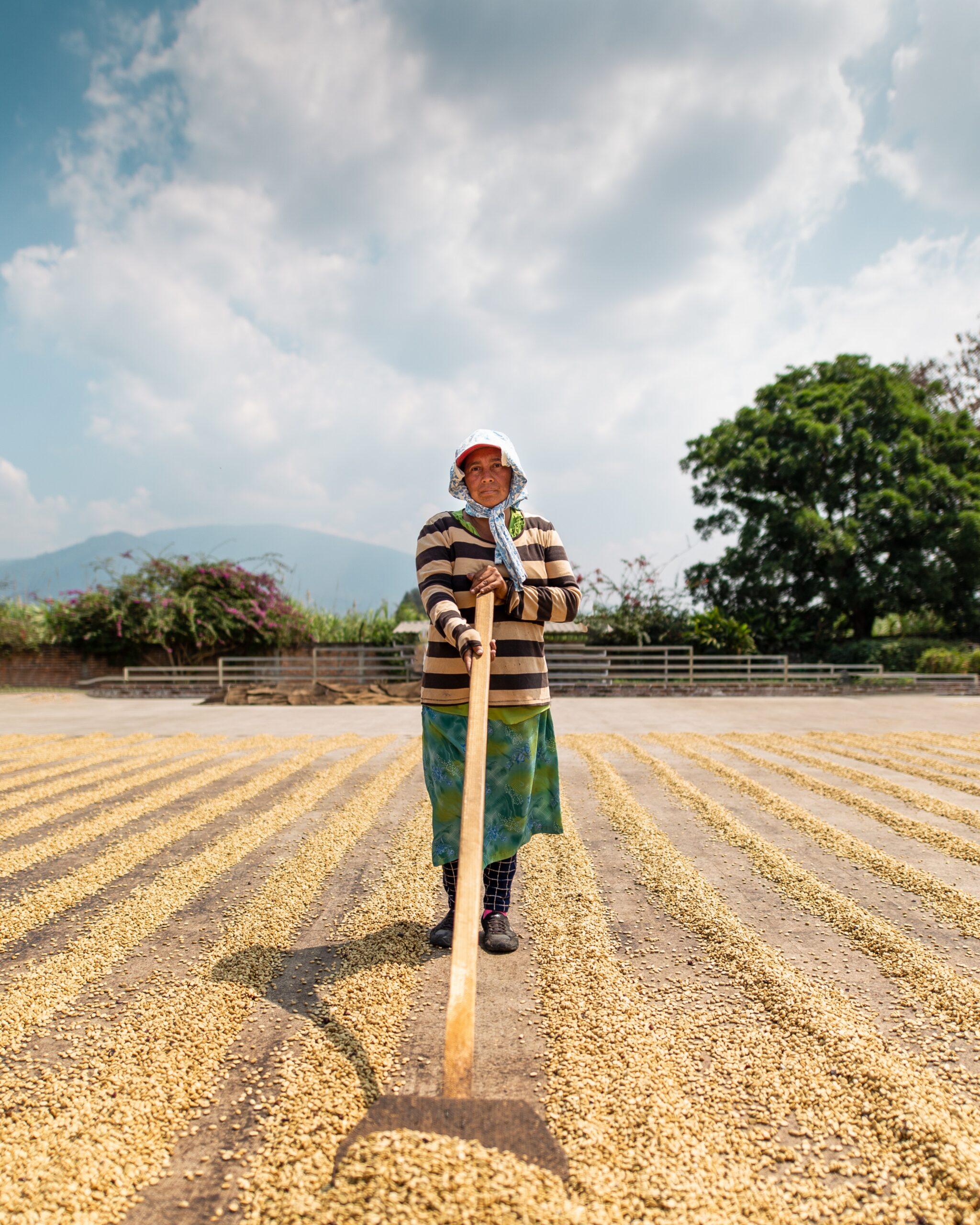 Imagen de fondo de Comunitaria Unidos por el Agua y la Agricultura (ACUA)